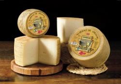 distribuidora de quesos al por mayor
